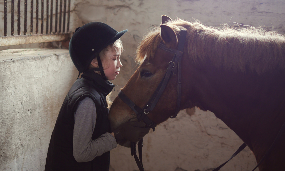 equine therapy, AADC